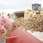 Türkiye Şeker Fabrikaları Personel Alımı 2015