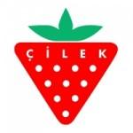 cilek-mobilya-is-basvurusu-300x300