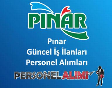 Pınar Personel Alımı ve İş İlanları