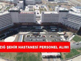 Elazığ Şehir Hastanesi Personel Alımı ve İş İlanları